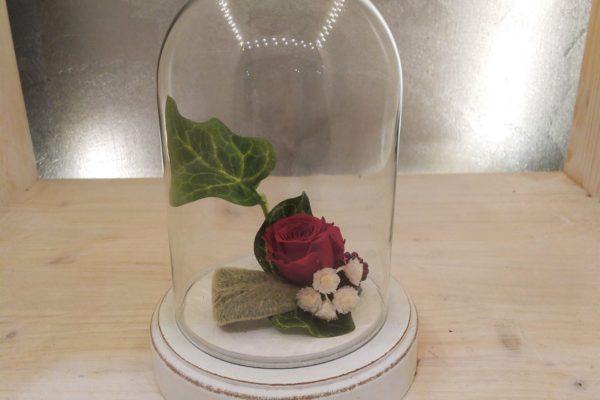 ClochesPM_roses_stab1