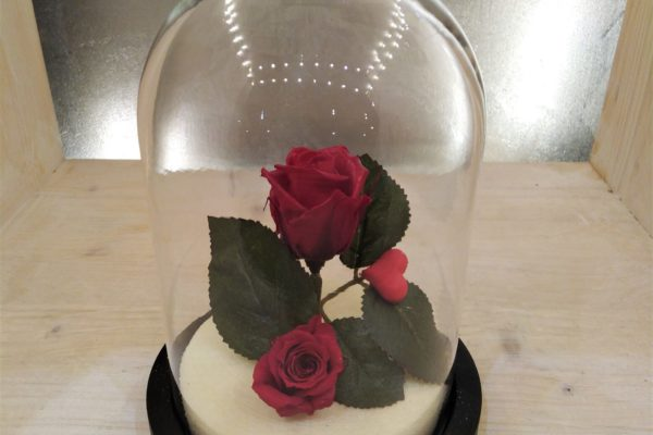 ClochesPM_roses_stab2